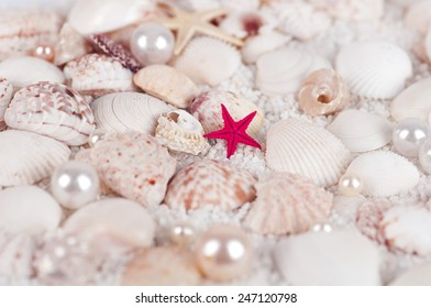 starfish on the background of the shells sand and pearls