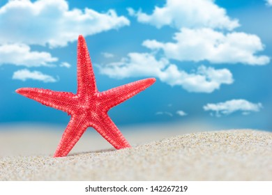 Starfish on the beach with clouds