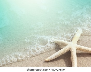 Starfish on Beach Sand for background