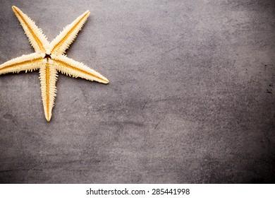 Starfish on gray stone surface. Travel background.