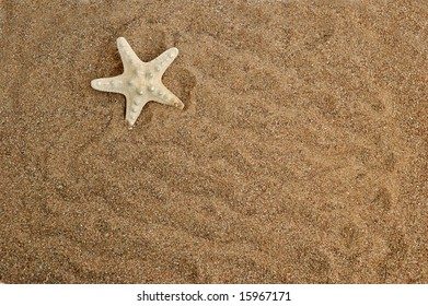 Starfish on a sand background