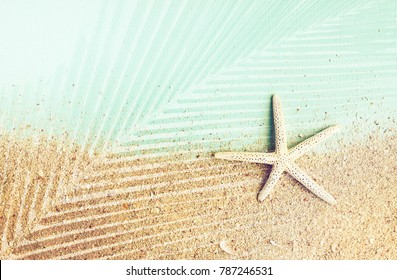 Starfish on sand and blue paper, plam leaf shadow effect, Styled faded retro tones.
