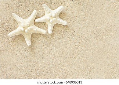 Starfish on sand of coral