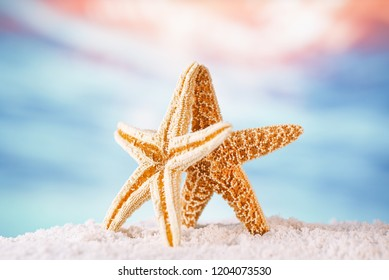 starfish on sand  with golden tropical ocean underwater seascape