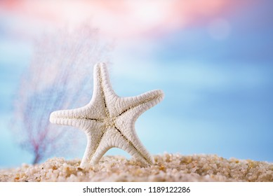 starfish on sand  with tropical ocean underwater seascape