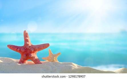 Starfish on a sandy tropical beach.Summer concept.