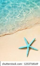 Starfish on the summer beach. Summer background. Tropical sand beach.