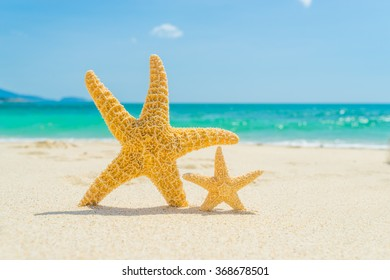Starfish on the tropical beach in Thailand