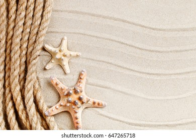 Starfish and palm leaves lying on the sea sand . There is a place for labels.