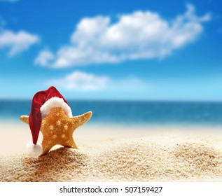 Starfish in red santa hat at the seaside. Christmas in summer beach.
