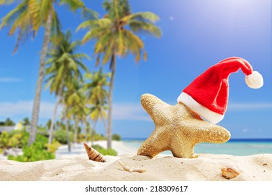 Starfish with Santa hat on it on a tropical beach on a hot summer day