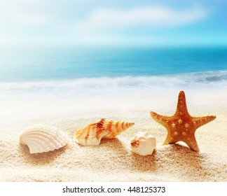 Starfish and sea shells on the beach and ocean as  background. Summer beach. Seashells. Summer concept.