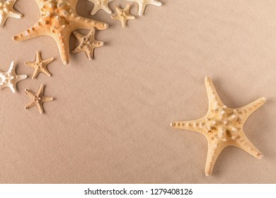 starfish or sea star on beach sand, background with copy space