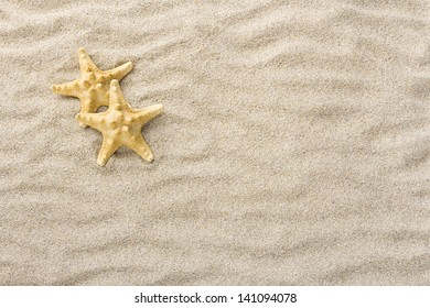 Starfish or Sea stars shells in the beach sand with copy or text space