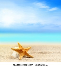 Starfish and seashell on the sandy summer beach at ocean background.  Summer concept.