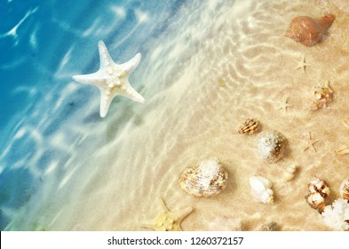Starfish and seashell on the summer beach in sea water. Summer background. Summer time