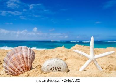 "Starfish with seashell and sign ""Love"" on the sandy beach in Hawaii, Kauai"