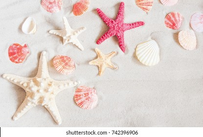 Starfish and seashells on sand beach, summer concept. Flat lay, top view, copy space