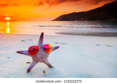 Starfish in sunglasses on sea beach at sunset, Bali, Seminyak, Double six beach