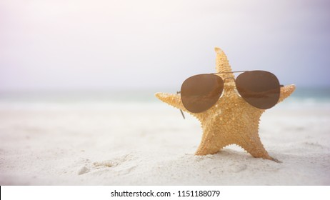 Starfish Sunglasses In The Sunny Beach,with a lot of copy-space