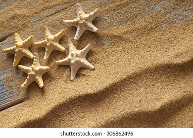 Starfishes on sand and planks