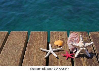 Starfishes and sea shells on wooden beach pier. Summer  Vacation concept.
