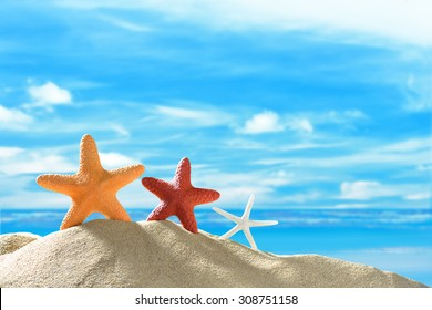 Starfishs on the sandy beach in summer with blue sea and sky travel icon