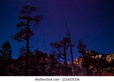 Stargazing Night Sky at Fairyland Loop at Bryce Canyon National Park