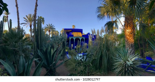 A stark blue colored villa in the middle of a cactus garden