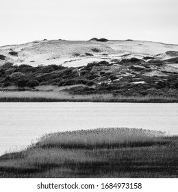 Stark square black and white photo of ocean water, marshland and dunes