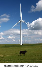 Stark white power generating wind turbines behind green cattle pasture, lone cow, white clouds, and blue skies.