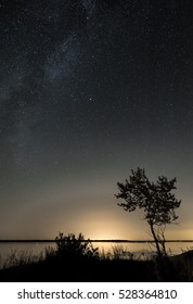 Starry autumn sky with tree at the bank of the river.