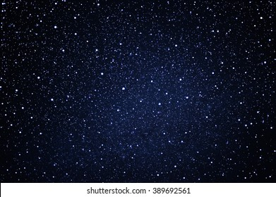 starry in the blue night sky