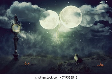 Starry misty thunder sky with two moons over night desert. Black white cat sits looking up on it. There are broken street clock in left side and two small bonfires