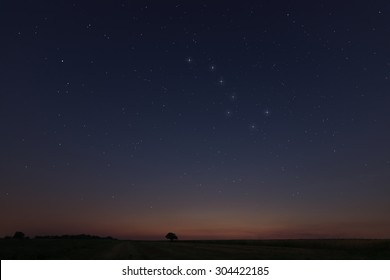 Starry night, Beautiful Star at sunset Field with Constellations Ursa major, Leo minor, Leo, Draco Botes, Canes Venatici, Coma Berenices