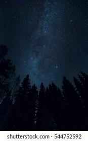 Starry night sky landscape