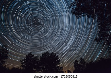Starry night sky, startrails between trees landscape