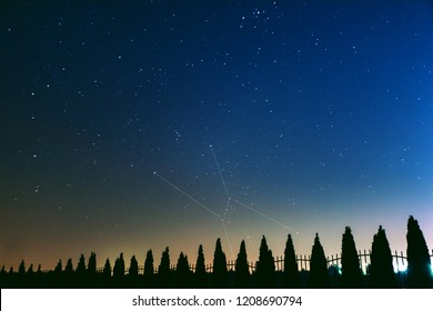 starry sky over the forest with the constellation Orion highlighted, toned