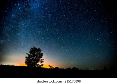 Starry sky and summer meadow with tree. High level of noise