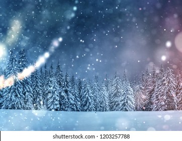 Starry sky in winter snowy night. Fantastic milky way in the New Year's Eve. Beautiful landscape and snow-covered pines on mountain slopes. Bokeh light effect, soft filter. Photo greeting card.