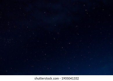Stars at night with backlit trees