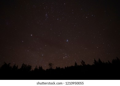Stars in the Night Sky with the silhouette of trees