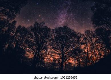Stars over Derwentwater Lake District
