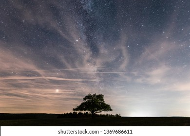 The stars in the sky and a lonely tree on a Meadow