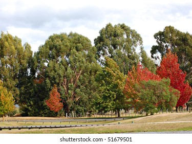 start of autumn's color