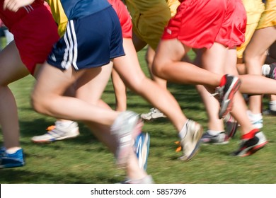 The start of a cross country running event