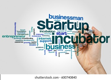 Startup incubator word cloud concept on grey background