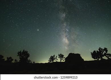 Stary Night at Joshua Tree National Park