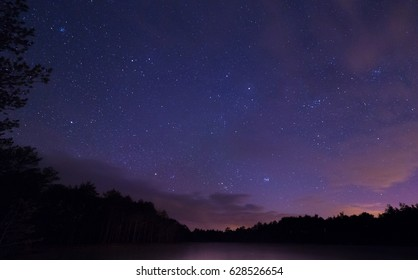 Stary night sky with sillhouettes of trees.
