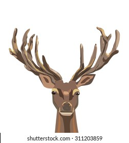 stately brown deer with bi? elegant horns